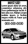 Sample Print Ad